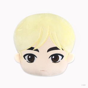 TinyTAN IDOL FACE CUSHION Jin